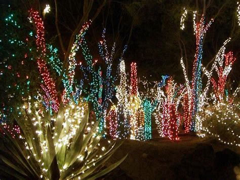 Led Outdoor Tree Lights-will Give A Remarkable Look To