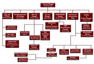 Service Organizational Organization Chart