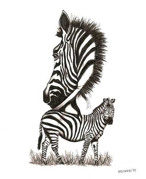ink drawing  zebra  black  white drawing
