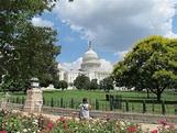 File:United States Capitol, Washington DC.jpg - Wikimedia ...
