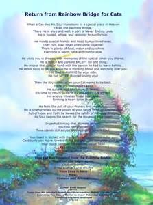 the rainbow bridge poem for cats cat rainbow bridge poem by brnet atwater animal medium pet