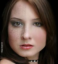 Portrait Professional Software
