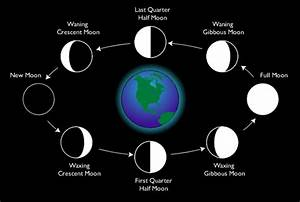Infofiles – What is a Lunar Month?
