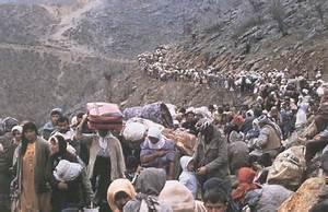 Migration, a Defense Mechanism | greteltroetsch  Migration