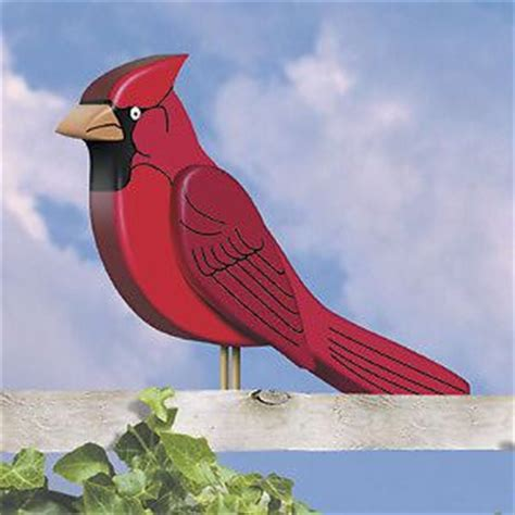 images  faux birds  cages  pinterest