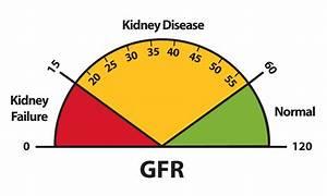 Normal Urine Test Results Chart Lesson 1 Understanding Kidney Disease Niddk