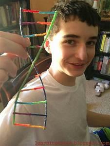 26 best images about DNA models on Pinterest | Models, Dna ...