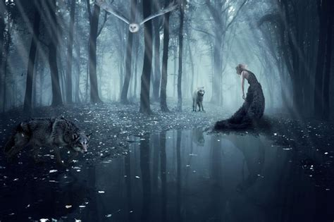 Isadora Vilarim Girl Wolf Owl Forest Wolves Gothic Goth