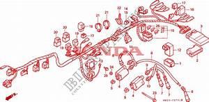 Wire Harness  Cb750f2  Honda Microfiche Motorcycle