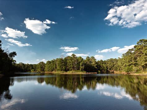 lake bastrop paddling rootsrated