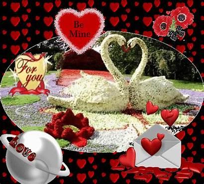 Romantic Shayari English Giphy Poems Sher Gifs