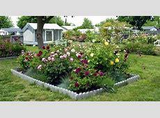 Small garden design with roses – Wilson Rose Garden