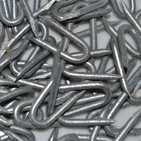 galvanised netting fencing staples  packs