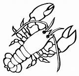 Lobster Coloring Pages Crustaceans Children Drawing Marine Realistic Claw Sheets Cartoon Clipartmag sketch template