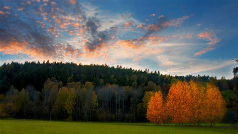beautiful autumn scene photography  sweden wallpapers