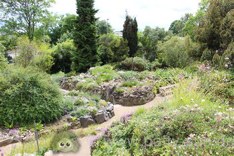 Botanischer Garten Mainz by Botanische G 228 Rten Mainz Und Darmstadt Patty Sue Die
