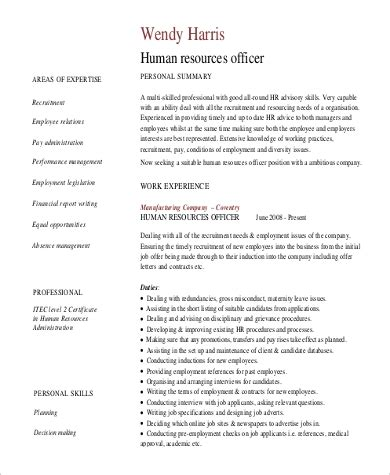 Exles Of A Professional Summary by Sle Professional Summary Resume 8 Exles In Pdf