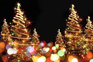 Christmas, Tree, Lighting, Ceremony