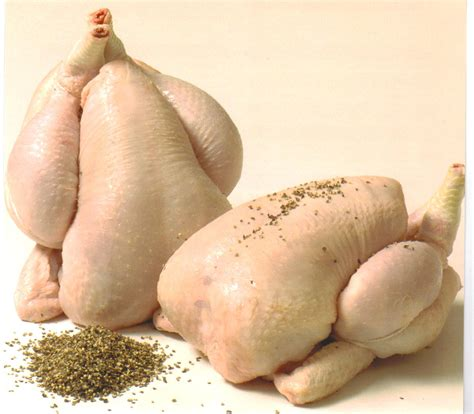 how do you cook capon chicken types of poultry everything you need to about it