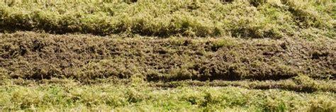 Wann Den Rasen Vertikutieren Und Düngen › Das Gartenmagazin Haus Kaufen Kirchseeon Hotel Deutsches Munster Wolfenbüttel Robinson Juist Hause Games Holland Elisabeth Sölden Der Seele