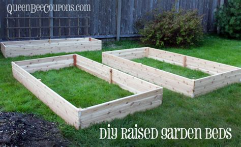 build raised garden bed raised beds how to build raised garden beds for 35