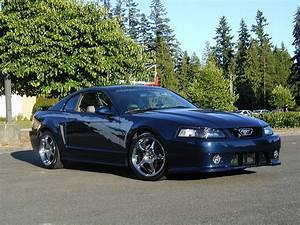 2002 Ford Mustang - Information and photos - Zomb Drive