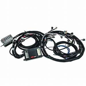 Ms3pro  U0026 39 Drop On U0026 39  58x Ls Plug And Play Harness With Ecu