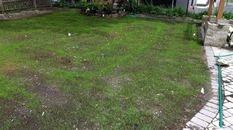 how to put in a new lawn did i use enough grass seed on my new lawn gardening landscaping stack exchange