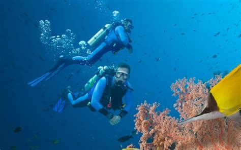 underwater heart attacks  rise  scuba divers warned