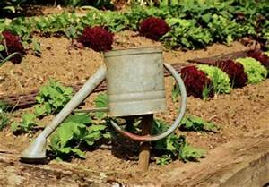Gartenbeet Anlegen Beispiele : gartenbeet neu anlegen eine anleitung garten mix ~ Yasmunasinghe.com Haus und Dekorationen