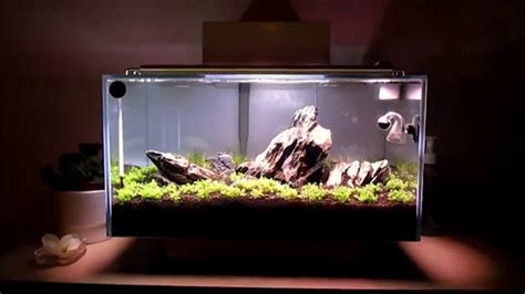 Fluval Edge Aquascape by Fluval Edge Aquascape