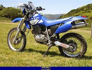 Yamaha Tt 600 S : 2002 yamaha tt 600 r moto zombdrive com ~ Jslefanu.com Haus und Dekorationen
