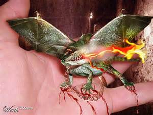 Baby Dragons Are Real