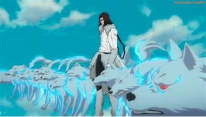 Starrk Coyote Bleach Anime Fanpop Jutsu Summoning