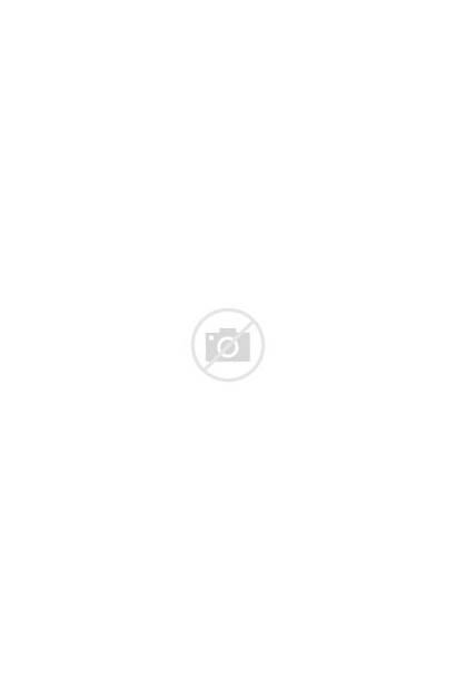 Brown Pants Slim Tailored Cream Womens Garments