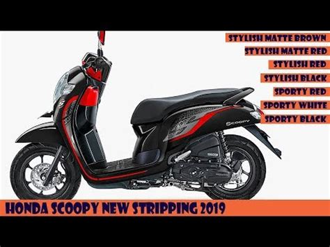 Honda Scoopy 2019 Image by Honda Scoopy New Striping 2019