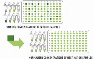 Concentration Normalization