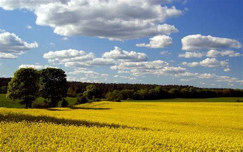 Clouds Landscapes Fields Blue Skies Wallpaper 1920x1200