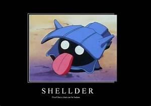 Pokemon Shellder Evolution Images   Pokemon Images