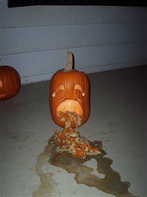 puking pumpkins   pics funnycom