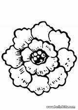 Coloring Colorear Flores Peony Flor Hellokids Fleur Dessin Dibujos Fichas Pintar Dibujar Coloriage Profe Clase Desenho Imagenes Rosa Uma Aparcana sketch template