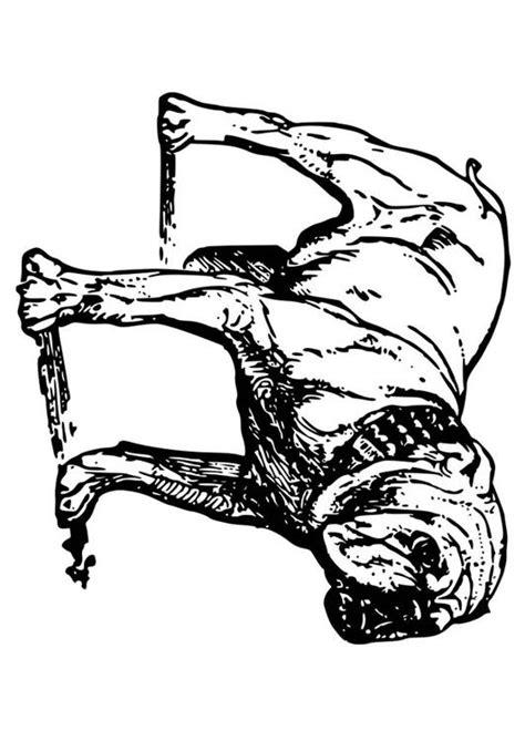 Amerikaanse Bulldog Kleurplaat by Kleurplaat Hond Bulldog Afb 18584