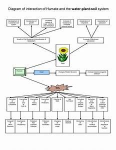 Soil Structure Diagram