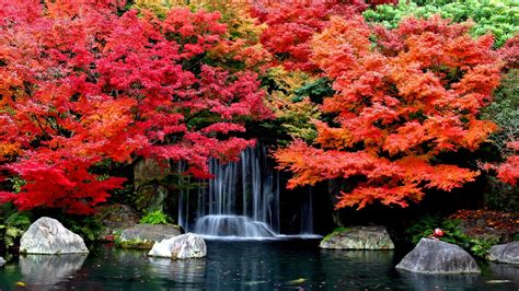 Autumn Fall Backgrounds Hd by Autumn Falls Desktop Background Hd Wallpapers 1629361