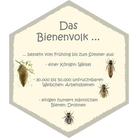 ameisen im bienenhaus wabe bienenvolk 26 x 30 cm bienenwabentafeln insekten ameisen und spinnen lehrtafeln
