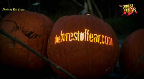 Pumpkin Picking Ridge Ny by Haunt House In Tuxedo New York The Forest Of Fear