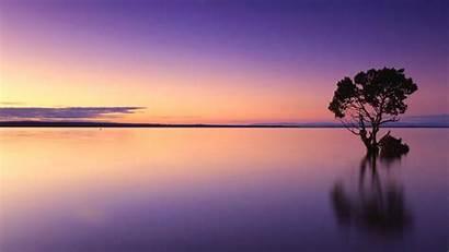 Peaceful Meditation Relaxing Sleep Healing Deep Stress