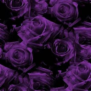 MySpace Dark Purple Roses Pattern Background | Twitter ...