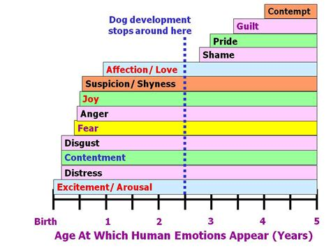 range of human emotions what i learned from tickling apes foodforthought