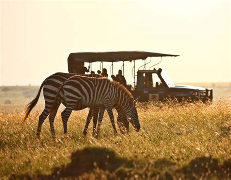 Best Safaris In Kenya Kenya The Luxury Safari Company